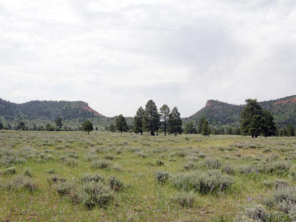 The Bears Ears buttes near Blanding, Utah, were named a national monument by then-President Barack Obama.
