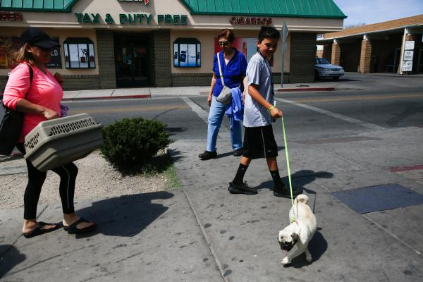 Liliana Figueroa and her son Alexander, 12, walk their pug, Michelle, back across the border. Michelle was in Mexico for a visit to the vet — for some stitches to mend her torn lip.