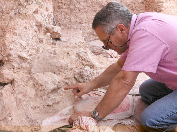 Max Planck Institute paleoanthropologist Jean-Jacques Hublin examines the new finds at Jebel Irhoud, in Morocco. The eye orbits of a crushed human skull more than 300,000 years old are visible just beyond his fingertip.