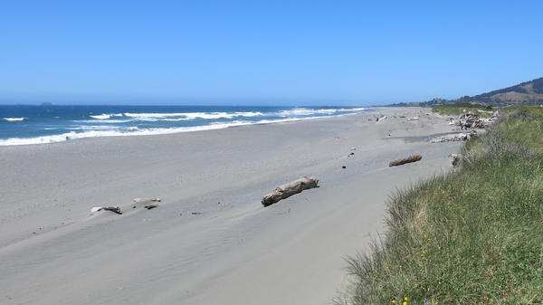 The beach is just a few blocks away from Gold Beach's main street. On a sunny day in the middle of the summer tourist season, the beaches were virtually empty. The fact that the beaches are rural and remote is attracting tourists, though.
