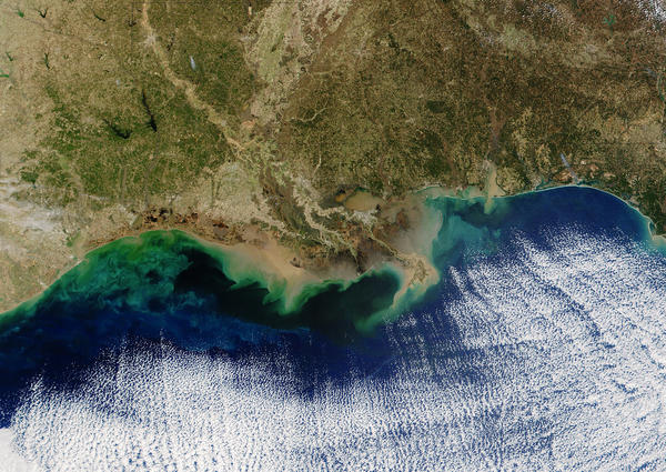 "The teal blue area along the Louisiana coastline represents a ""dead zone"" of oxygen-depleted water. Resulting from nitrogen and phosphorus pollution in the Mississippi River, it can potentially hurt fisheries."