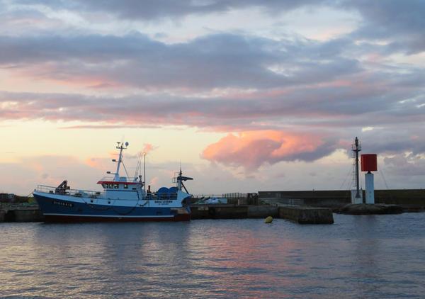 Guilvinec port