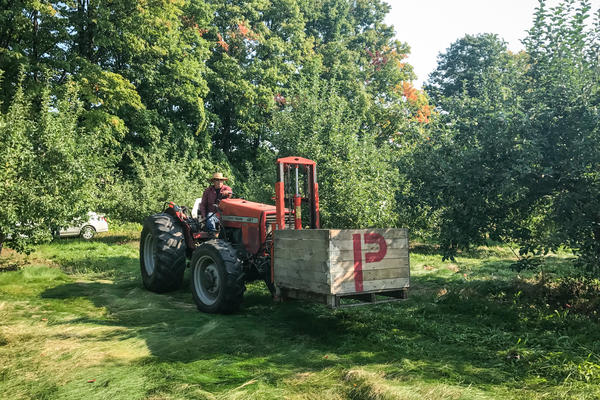 As in the rest of the country, growers in heavily agricultural northern Michigan rely overwhelmingly on migrant laborers to work the fields and orchards. Most of the pickers are from Mexico. Growers say it's just about impossible to find Americans to do this work.