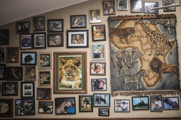 """A wall in John and Grace Slaby's home reflects their passion. """"If you're going to do this kind of thing ... you're not going to have a life outside of it,"""" John says."""