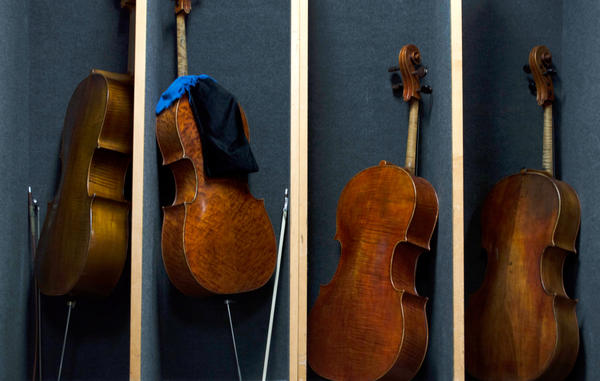 Cellos are lined up backstage at the Chicago Symphony Orchestra before a Nov. 8 rehearsal of Schubert's Ninth Symphony. The CITES Rosewood regulations have made some musicians apprehensive about taking instruments containing the wood across international borders.
