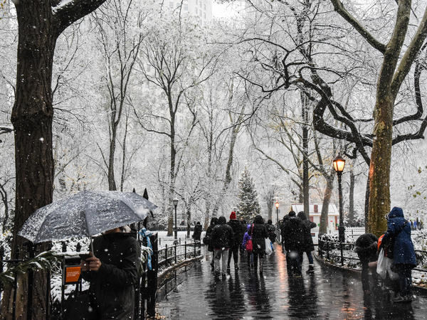 The first snow of the season didn't keep New Yorkers out of Madison Square Park. Parts of the Deep South also saw an unusual early snowfall.