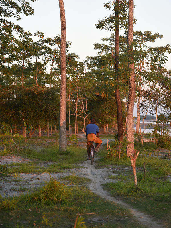 Jadev Payeng cycling back to his boat at day's end.