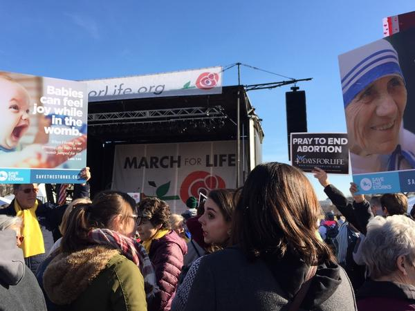 Participants at the 2018 March for Life on the National Mall in Washington.