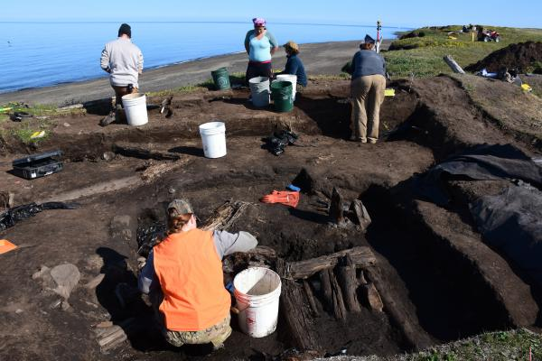 A team of volunteers is rushing to excavate an ancient hunting cabin near Utqiagvik, Alaska, the town formerly known as Barrow.