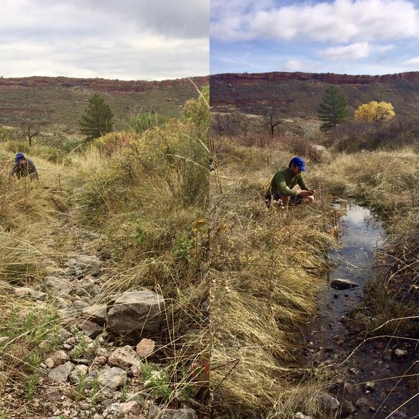 In the fall of 2017 (left), Stream Tracker volunteer John Hammond found this creek near Fort Collins, Colo., to be dry. A year later (right), it was flowing again.