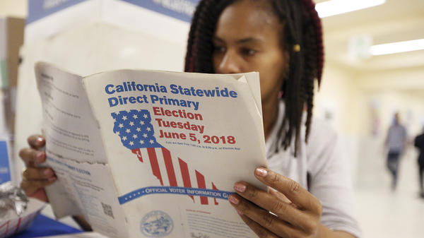 Nikko Johnson reviews the California Primary election guide at San Francisco City Hall on Tuesday.