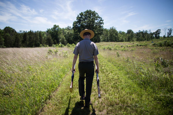 Brandon Bies carries two muskets from the Civil War era to the site at Deep Cut. The soldiers whose limbs were found in the pit were likely wounded during a charge along the Deep Cut ridge.