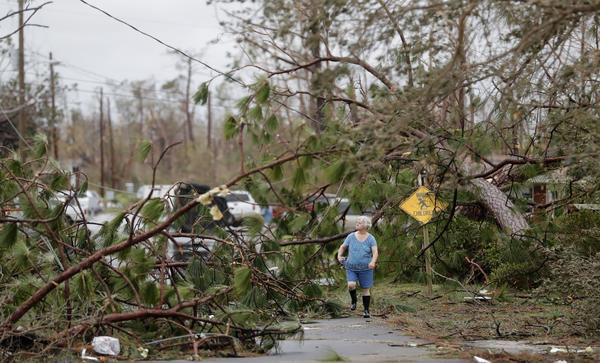 Carol Ralph walks through downed trees blocking her heavily damaged neighborhood just after Hurricane Michael passed through Panama City, Fla., on Wednesday.