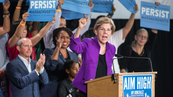Sen. Elizabeth Warren speaks at a rally for Democratic gubernatorial candidate Jay Gonzalez (left) and congressional Democratic candidate Ayanna Pressley (second from left).