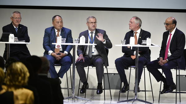 A panel discussion at the Partnering for Green Growth Summit in Copenhagen last month.