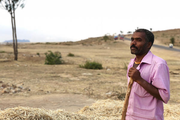 Mezgebo, 47, found only a pile of rocks when he returned to his family home. But he began work anyway, winnowing his wheat within view of the Eritrean border.