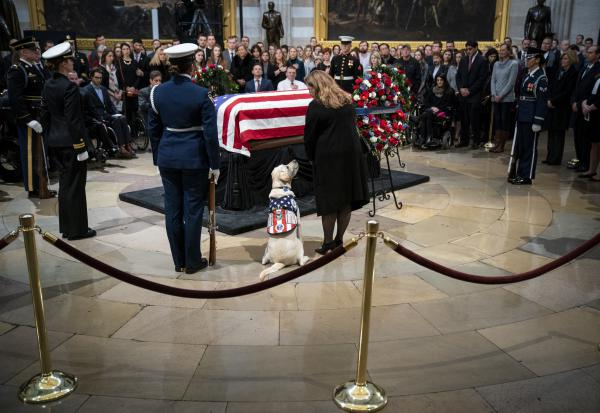 Sully, a yellow Labrador service dog that belonged to former President George H. W. Bush, sits near the casket of the late president as he lies in state at the U.S. Capitol, Tuesday in Washington, D.C.