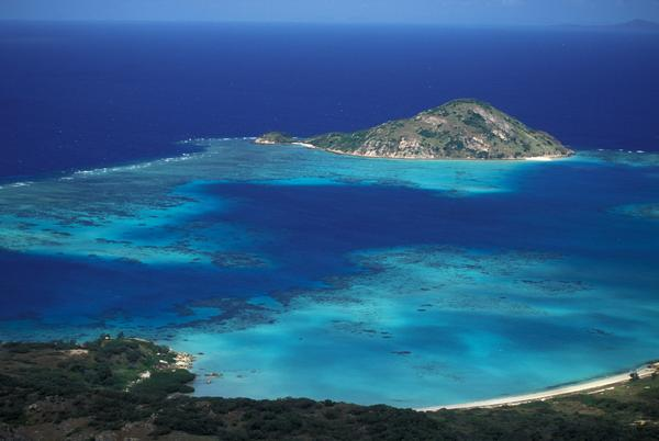 Researchers studied the carbon storage of deep-water seagrasses living at Lizard Island, Australia.