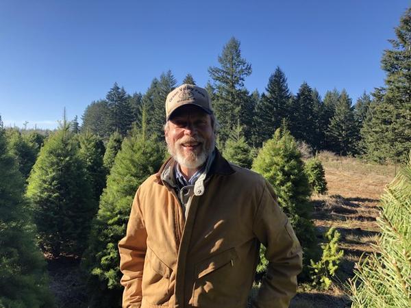 <p>Terry Muilenburg&rsquo;s tree farm near Molalla, Ore., uses non-toxic methods to control pests.</p>