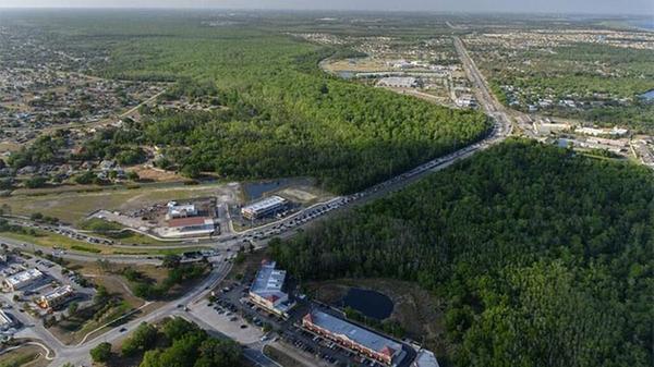A wildlife corridor in Central Florida.