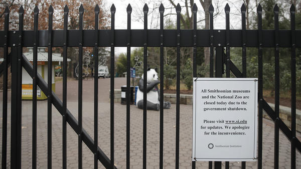 The Smithsonian's National Zoo in Washington, D.C., is among those institutions closed because of the partial government shutdown.