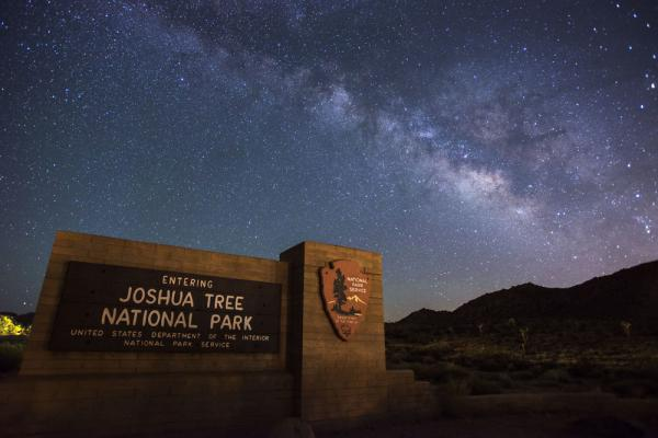 Some of the namesake trees within Joshua Tree National Park have been damaged during the partial government shutdown, but the park's superintendent was unable to comment to media organizations.