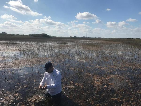 A new Everglades reservoir is intended to help hydrate the Everglades and prevent toxic algae blooms along Florida's coasts.
