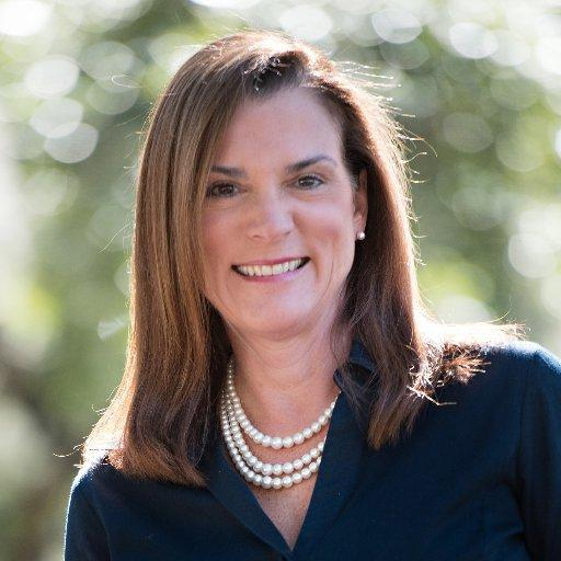 Former state Sen. Dana Young (R-Tampa) has been tapped by Gov.-elect Ron DeSantis to lead the tourism-marketing agency Visit Florida.