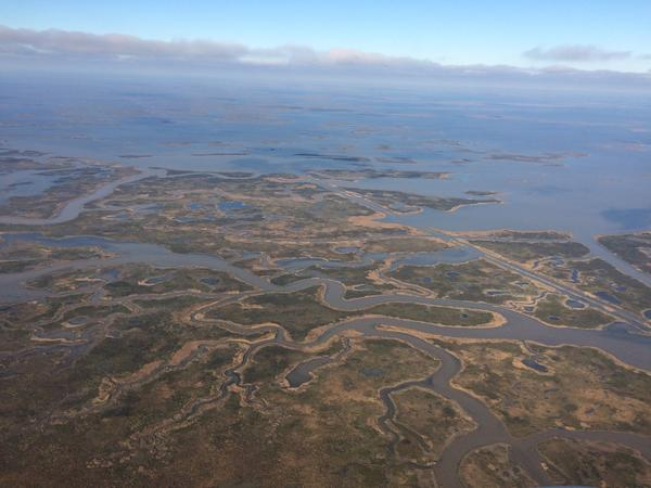 A new report from Tulane University says we've been underestimating just how quickly our coastal marshes are sinking.