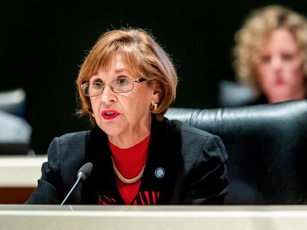State Rep. Gayle Harrell has been a long-time critic of medical marijuana.