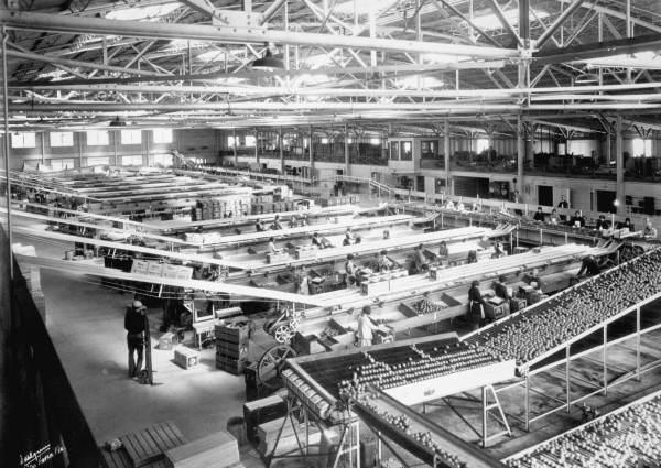 Winter Haven Citrus Growers Association packing house. 1937.