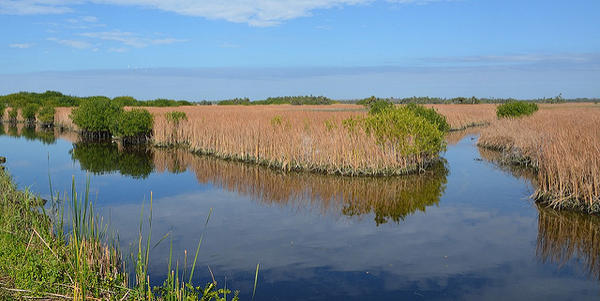 The site for the proposed exploratory drill is six miles outside of Miramar, FL.