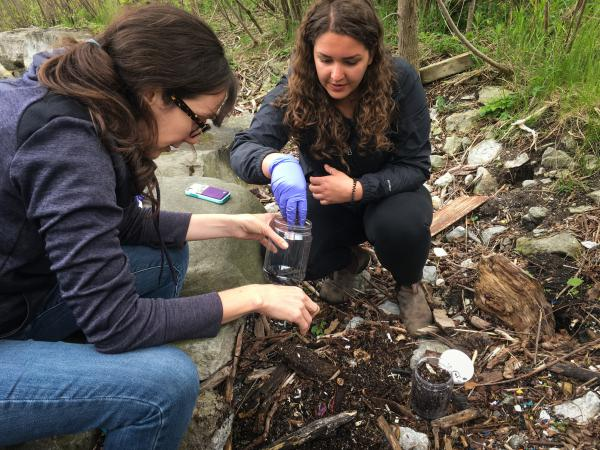 Ecologist Chelsea Rochman (left) and researcher Kennedy Bucci dig through washed-up debris along Lake Ontario. They're looking for small particles of plastic that make their way into oceans, rivers and lakes.