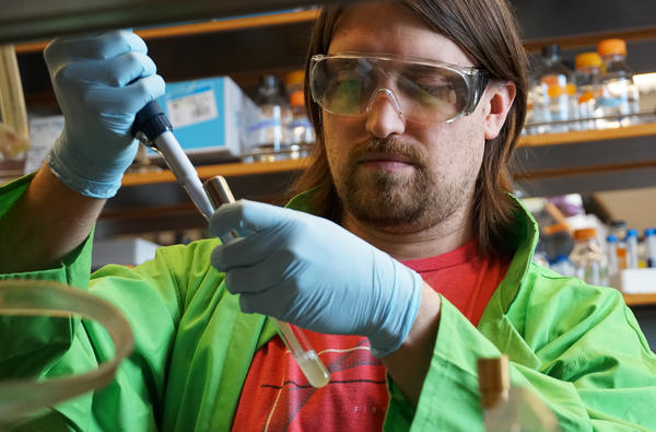 Washington University postdoctoral researcher Corey Westfall is part of a team investigating how the chemical triclosan interferes with antibiotic treatment.