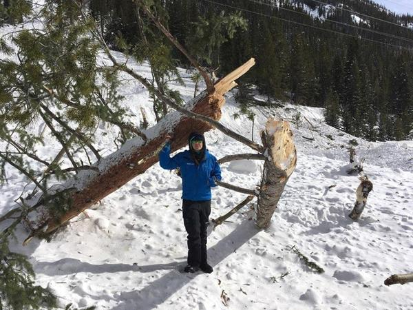 """Avalanches are running bigger than many have us have seen in our careers,"" read a Facebook post from the Colorado Avalanche Information Center accompanying this photo on March 8, 2019."