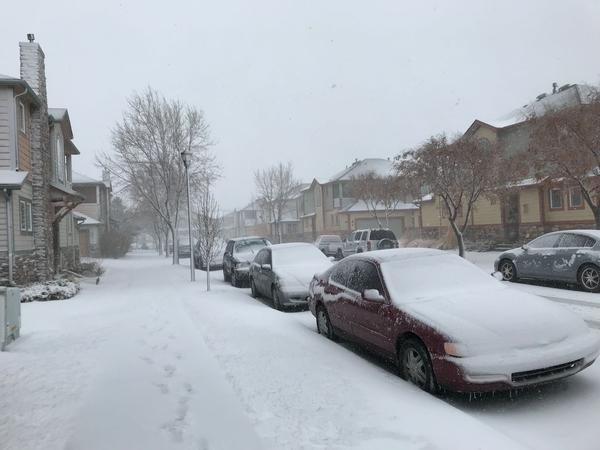 Snow covers a residential street in Fort Collins.