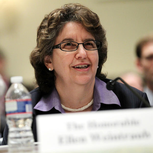A 2011 file photo of Federal Election Commission Chair Ellen Weintraub. Weintraub warns that a new federal court decision could open the way for fraudsters to bilk political donors.