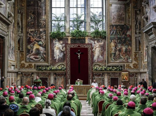 Pope Francis celebrated a final Mass on Sunday to conclude his unprecedented summit of Catholic leaders on clergy sexual abuse.