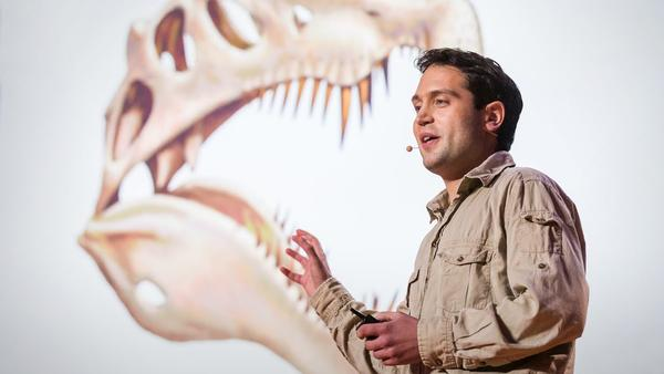 "University of Detroit Mercy paleontologist Nizar Ibrahim unearthed a full skeleton of Spinosaurus, a ""lost giant of the Sahara"" that lived 100 million years ago."