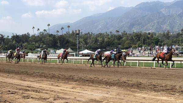 Horses and jockeys charge toward the finish of a race on Santa Anita Derby day. The Derby was the most prominent event on a schedule that included 11 horse races.