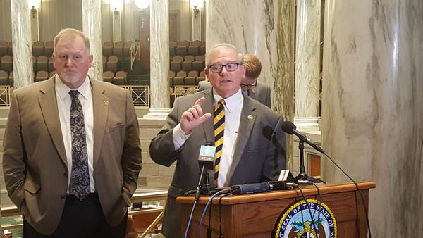 Senate Appropriations Committee Chairman Dan Hegeman discusses the Senate's version of the state budget during a Thurs. news conference.