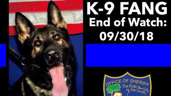 The new law, which increases penalties for killing or seriously injuring police dogs, is in honor of Jacksonville Police K-9 Fang, who was killed by a carjacking suspect last year.