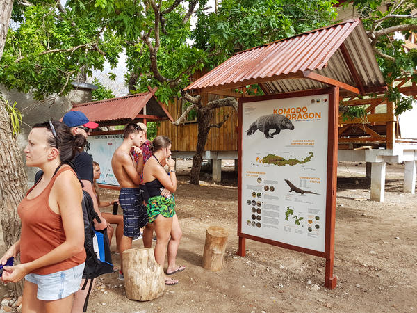 Tourists in Komodo National Park learn about the park's Komodo dragons, classified as a vulnerable species.