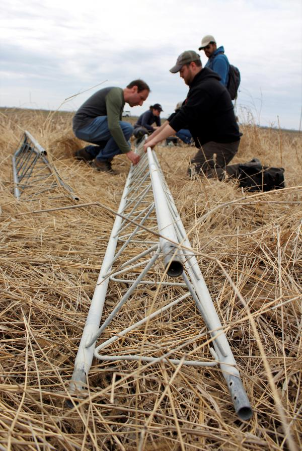 Researchers set up a tower that will hold antennas to track American golden plovers as they migrate through central Illinois.