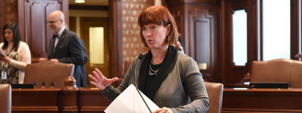 State Sen. Heather Steans sponsored at a bill to require  Illinois public schools to teach a curriculum that includes contributions of LGBTQ individuals.