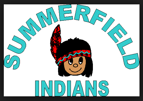 Summerfield Elementary is one of several Hisllborough County schools that will decide on a new  mascot