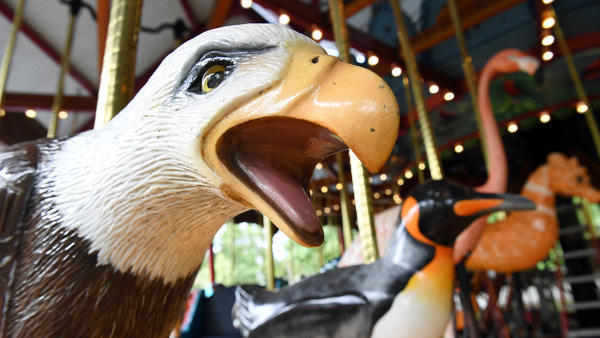 As of Wednesday, you won't be able to ride this bald eagle at the carousel at the Smithsonian National Zoo in Washington, D.C. The zoo and Smithsonian museums closed to the public because of the partial government shutdown.