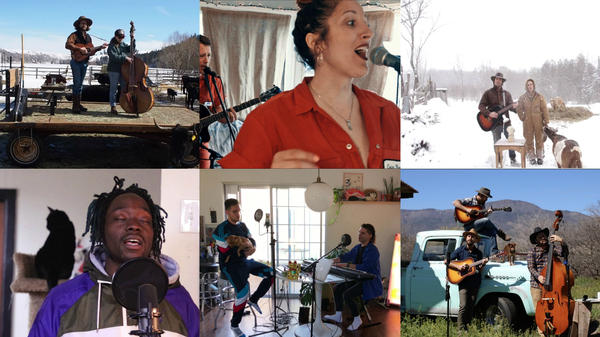 Who's got the best pet? Clockwise from top left: American Forrest, Erin Rae & The Heartbeets, The Grackles, The Brothers Reed, TWINKIDS, Ano Bank$.
