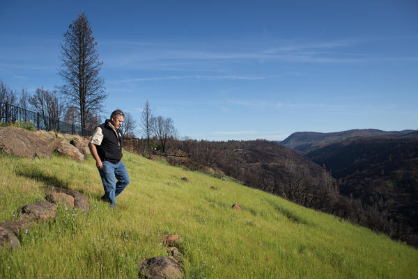 Paradise Recreation and Parks Director Dan Efseaff walks toward the Little Feather River Canyon in Butte County, Calif. Efseaff wants to try a radical idea in Paradise: Pay people not to rebuild in this slice of canyon, to create a safety buffer to prevent future wildfires from spreading.