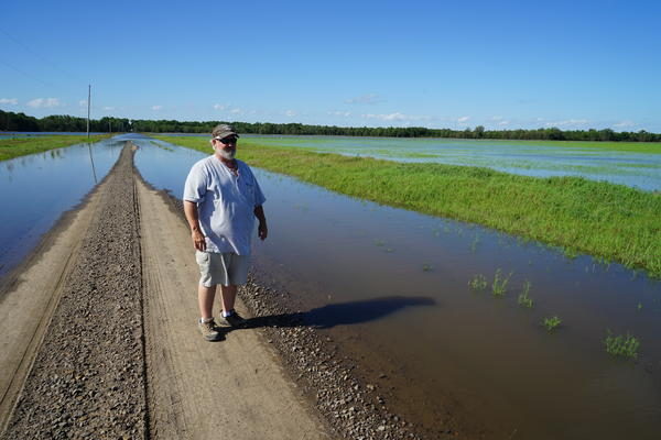 Robert Stobaugh looks at a field of rice, planted a few weeks ago, that has been flooded by the nearby Arkansas River.